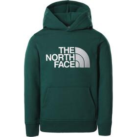 The North Face Drew Peak Felpa con cappuccio P/O Ragazzi, verde